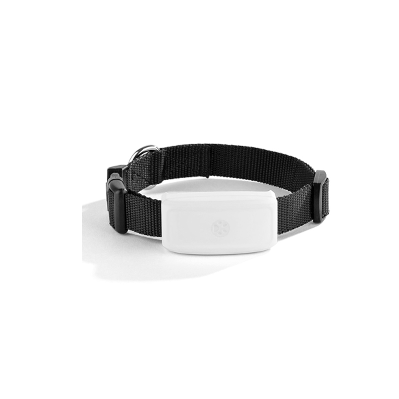 TKSTAR MiNi Waterproof Pets GSM GPS Locator Tracker Rastreador Tracking For Pet Dog Cat Real Time Free APP Track Alarm Device
