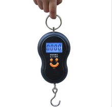 Mini 50Kg/10g Portable LCD Display Luggage Fishing Hook Electronic Weight Digital Scale Pocket Weighing Hanging Scale