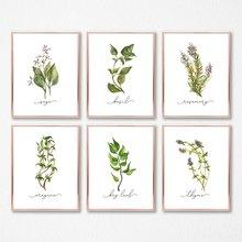 Травяная коллекция настенные художественные плакаты на холсте