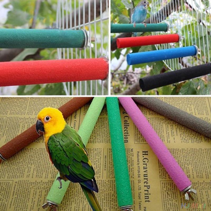 Пион попугай Птичье гнездо Измельчить коготь мельница песчаные палки стойка окунь