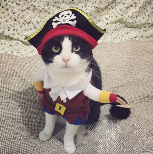 f9ae02d64a3 Funny Halloween Pet Cat Dog Pirate Costume Cosplay Clothes with Dog Puppy  Decoration-in Dog Hoodies from Home   Garden on Aliexpress.com