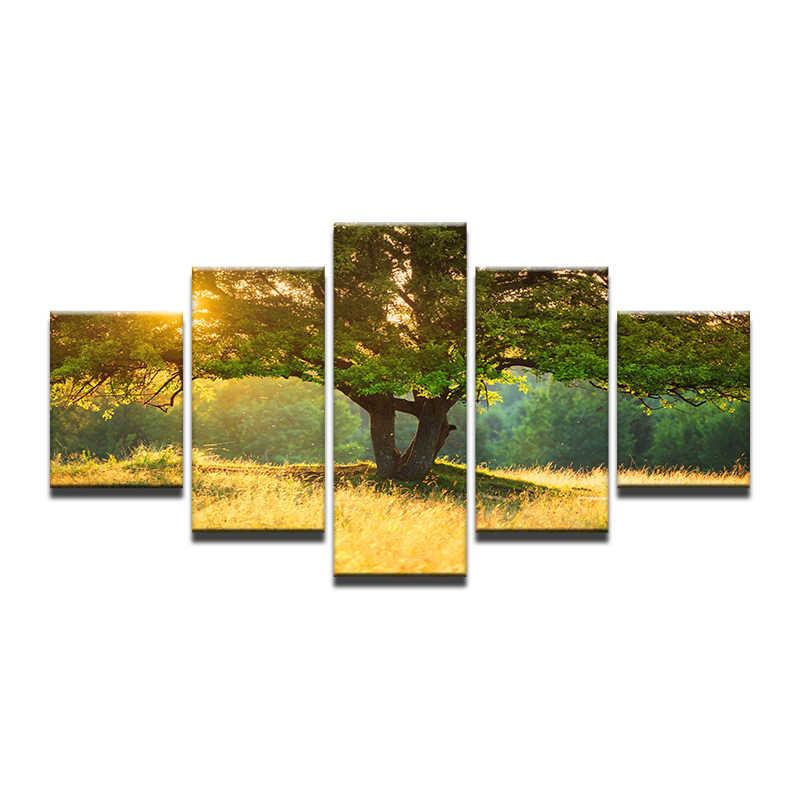 Oprawione obraz na płótnie drzewo krajobraz słońce dekoracje Home Decor obraz olejny Wall Art dekoracyjny obraz do salonu 5 sztuk