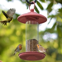 plstic Bird feeder outdoor garden parrot bird feeding supplies