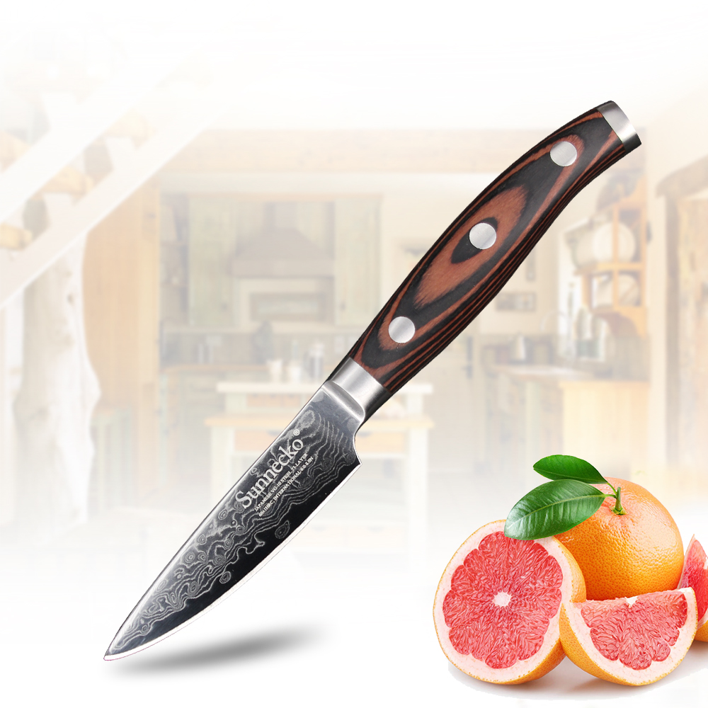Sunnecko 3.5 inch Paring Knife Kitchen Chef's Knives 73-Layers Damascus Steel Sharp Blade Pakka Wood Handle Fruit Cutting Tools
