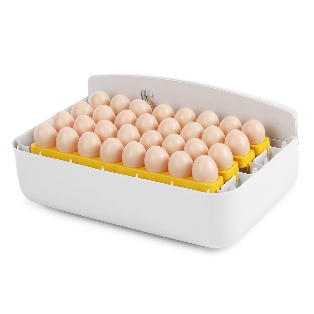 Ev ve Bahçe'ten Besleme ve Sulama Malzemeleri'de Çok amaçlı 32 Yumurta Akıllı Otomatik Yumurta Kuluçka Sıcaklık Kontrolü Kuluçka Kuluçka için Tavuk Ördek Kuş Kümes Hayvanları'da  Grup 1