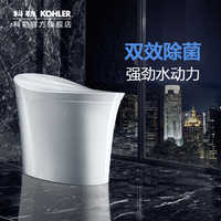 Automatic Remote Toilet Flushing Toilet With 5401 Remote Sensing Toilet 2018 New Arrival Hongying Ceramic Siphon Flushing 3.0-6.