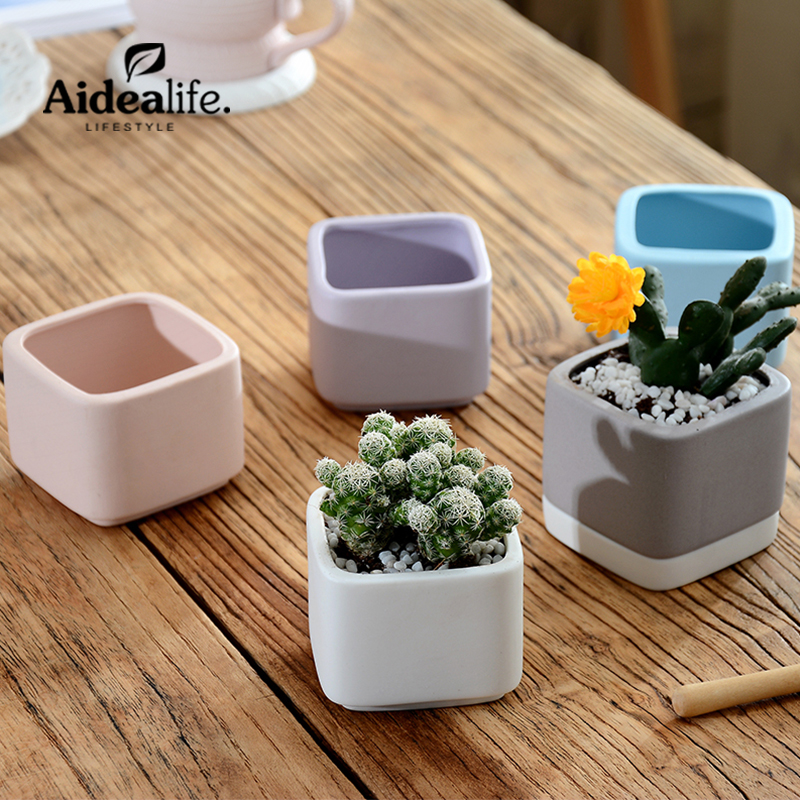 mini ceramic flower pots planters for succulents indoor. Black Bedroom Furniture Sets. Home Design Ideas