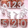 Hot Sale 10.5*1.2cm Wooden Numbers 0-9 Craft White Wood Number Craft Home Decor Party Event Supplies