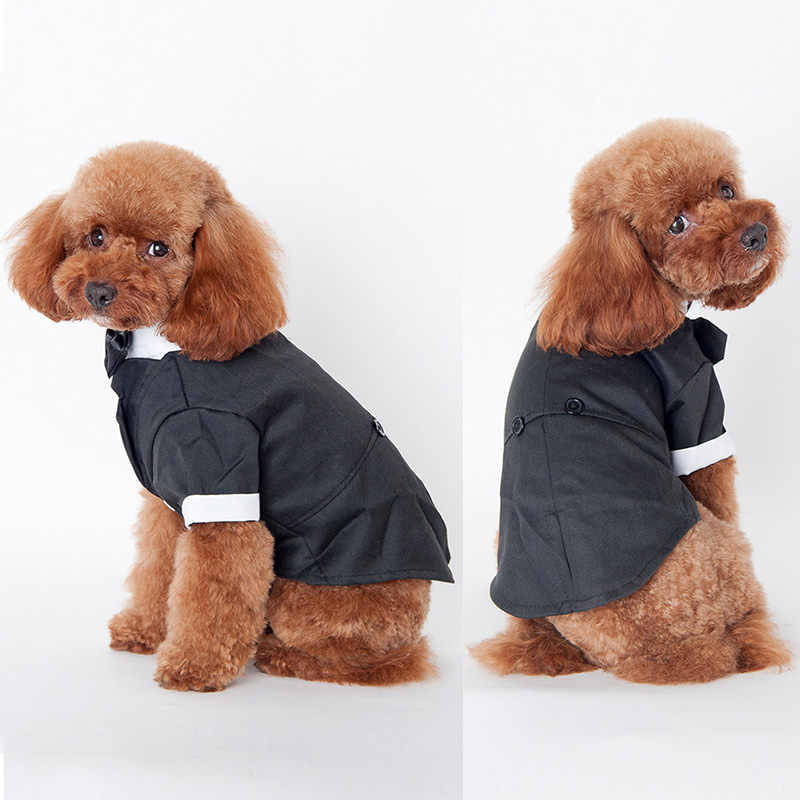 كبير لطيف الحيوانات الأليفة الكلب القط الملابس للكلاب الصغيرة الأمير الزفاف بدلة سهرة القوس التعادل جرو معطف 5 أحجام لطيف الحديثة