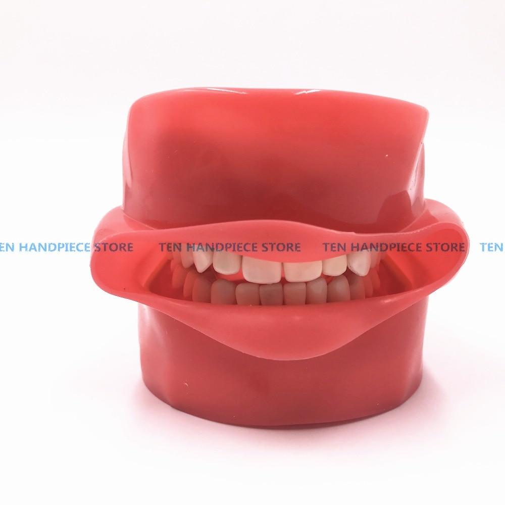 2018 goede kwaliteit Orale Simulatie Praktijk Systeem Tandheelkundige Phantom Hoofd voor Tandheelkundige School - 2