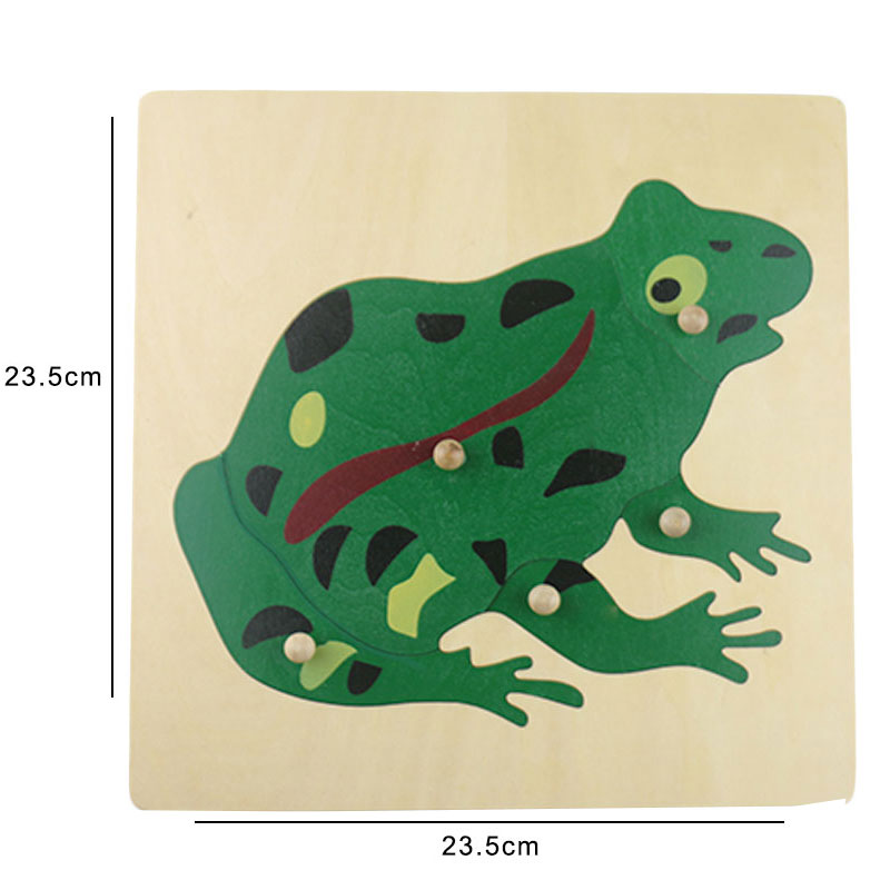 Educational Wooden Montessori Toys For Infants Toad Puzzle Montessori Brinquedo Educativo Learning Toys For Children C546Z