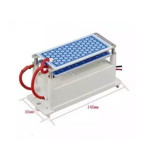 Image 3 - 220V/110V 10g Portable Ceramic Ozone Generator Double Integrated Long Life Ceramic Plate ozonator air Water Cleaner Air Purifier