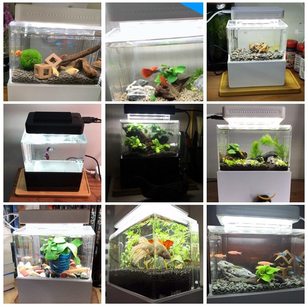 Mini réservoir de poisson en plastique Portable Aquarium de bureau bol de poisson avec Filtration de l'eau LED et silencieux pompe à Air Mini accessoires d'aquarium - 6