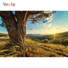 Yeele Landscape Photocall Big Trees Mount Sunrise Photography Backdrop Personalized Photographic Backgrounds For Photo Studio