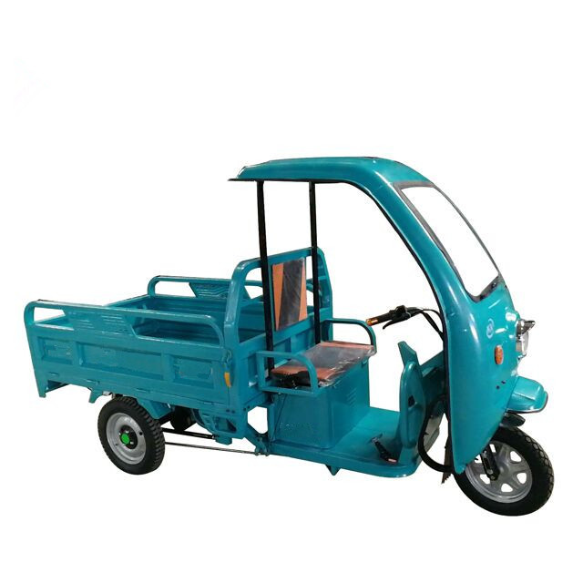Golden supplier 3-wheeler electro-tricycle with awning
