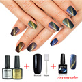 One Sets 10ml Cat Eye Chameleon Gel Nail Polish Glitter 3D UV Gel Polish Magnetic Varnish Magnet Blue Sapphire Manicure Varnish