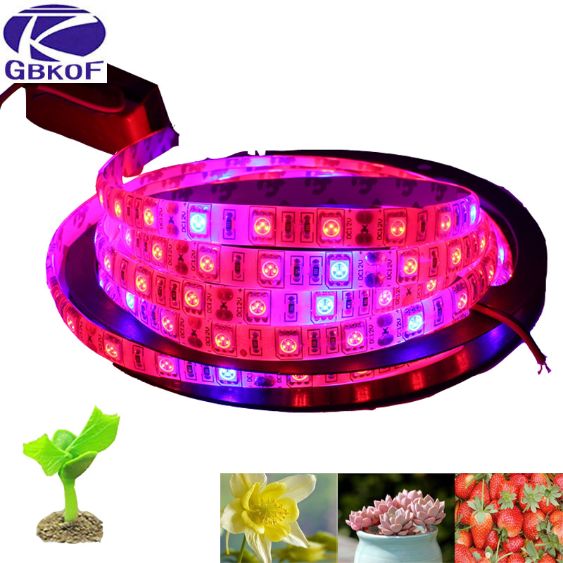Reviews Led Grow Lights
