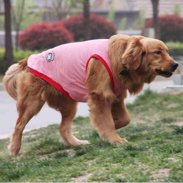 13e54ae230b7 Summer Big Dog Vest Large Dog Clothes T shirt Labrador Golden Retriever  Clothing for Big Pet Costume Samoyed Dog Shirt