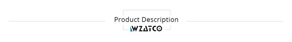 Product description Projector