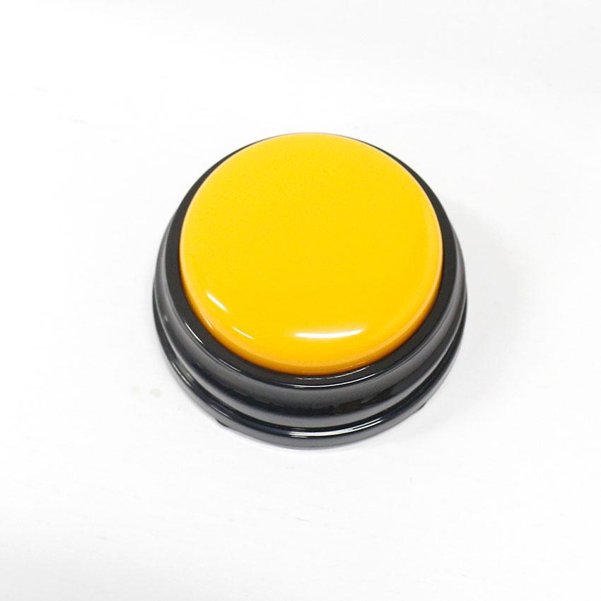 Voice Recording Button  (7)