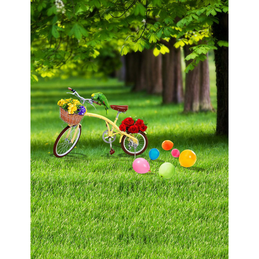 Photography backdrops Photo Background Vinyl Spring Park green grassland Interior decoration Photo Studio backdrops S-2441 300cm 300cm vinyl custom photography backdrops prop digital photo studio background s 4748