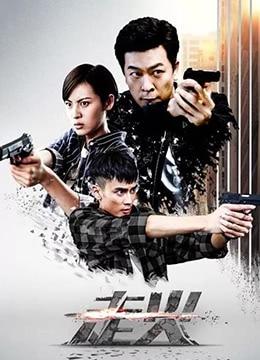 《走火》2018年中国大陆动作,悬疑电视剧在线观看