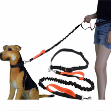 Pet Dog Leash Running With Safety Reflective Hands Free Elasticity Leashes Collar Harness Leads For Medium Big Dogs Walking