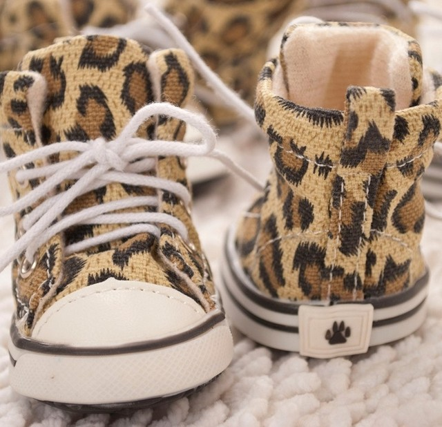 Spring 2014 leopard grain pets canvas shoes chien dog tennis shoes cute  casual shoes mascotas perro e07cd9a5bbcc