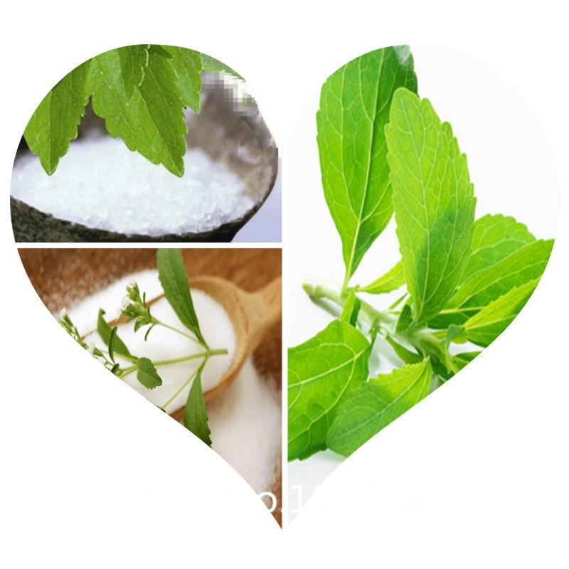 popular stevia rebaudiana seed buy cheap stevia rebaudiana. Black Bedroom Furniture Sets. Home Design Ideas
