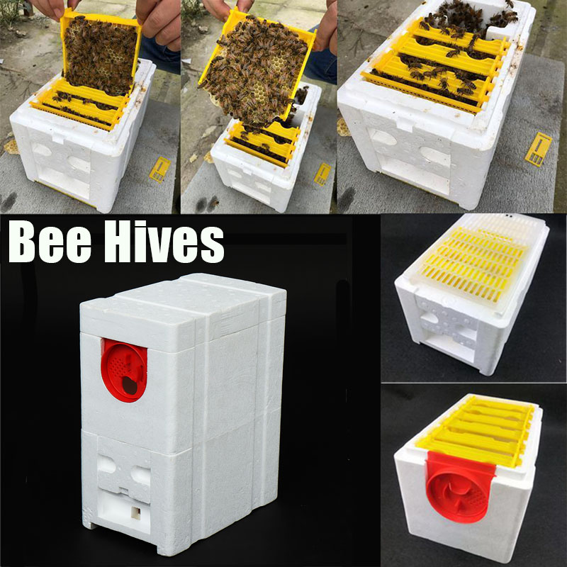 King-Box House-Case Beekeeping-Equipment-Tool Bee-Hives-Box Pollination Foam Home Harvest