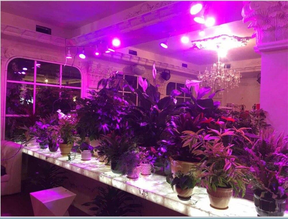 Le Jeune moderne.Jardin-Lot de 9 ampoules 100W LED Lampe de croissance E27 Full Spectrum-Lot de 9 lampes de croissance full spectrumpour la croissance des plantes. Simple à installer avec sa douille E27 standard, ce lot unique de lampes de croissance permettra d'apporter suffisamment de lumière pour une bonne croissance de toutes vos plantations d'intérieur à coup résonné.Spectre complet (full spectrum ) de la lumière pour aider à la croissance des plantes d'intérieur. Économie d'énergie, faible consommation.