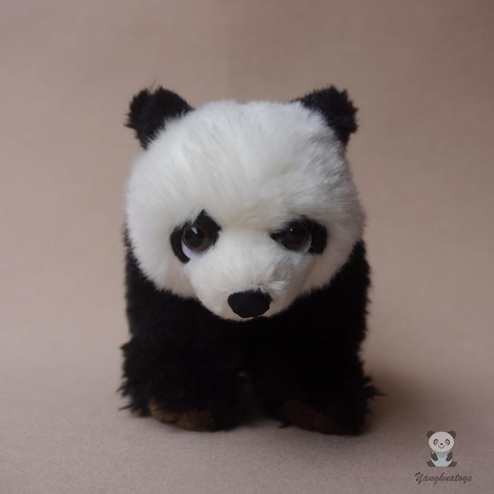 1010 Gambar Hewan Panda Lucu HD