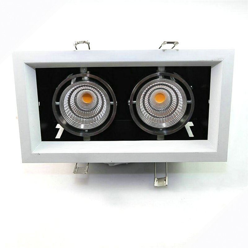 Double LED downlight Dimmable 2x10 W LED lampe de plafond LED spots AC85V-265V chaud/froid blanc plafond recesse