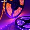 [DBF]LED 스트립 5050 RGB/RGBW/RGBWW IP65 방수 DC12V 유연한 LED 빛 빨강/녹색/파랑/차가운 흰색/따뜻한 흰색 60LED/m 5 메터/몫