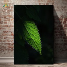 Nordic Posters And Prints Green Nettle Plant Modern Canvas Art Painting Wall Decorative Pictures for Living Room