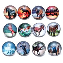 12pcs/lot Horse Theme Glass Charms 18mm Snap Button Jewelry For 18mm Snaps Bracelet Snap Jewelry KZ0677(China)