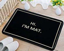 Hi Im Mat -Doormat Non-Slip Machine Washable Outdoor Indoor Entrance Doormat Decor Rug