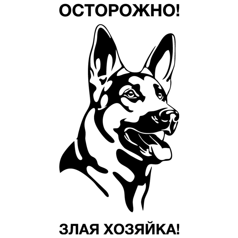 CS-1402#12*23cm be aware of dogs funny car sticker vinyl decal silver/black for auto stickers styling