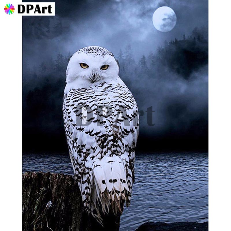 Diamond Painting 5D Full Square/Round Drill Owl Moon Daimond Embroidery Painting Cross Stitch Kit Mosaic Crystal Picture M816Diamond Painting 5D Full Square/Round Drill Owl Moon Daimond Embroidery Painting Cross Stitch Kit Mosaic Crystal Picture M816
