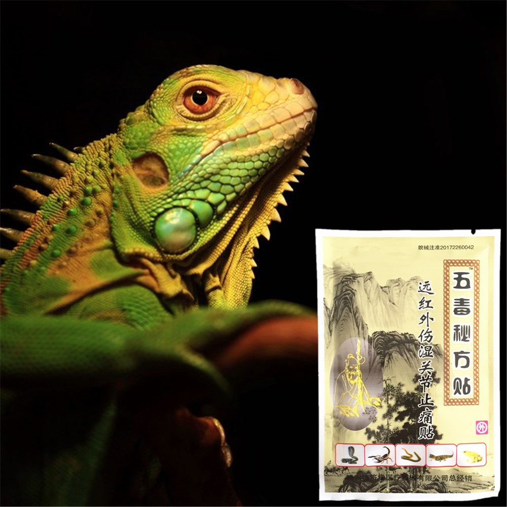 MIYUELENI Lizard venom massage Essential oil Patches Dredging Meridian Relieve muscle rheumatism joint pain body image