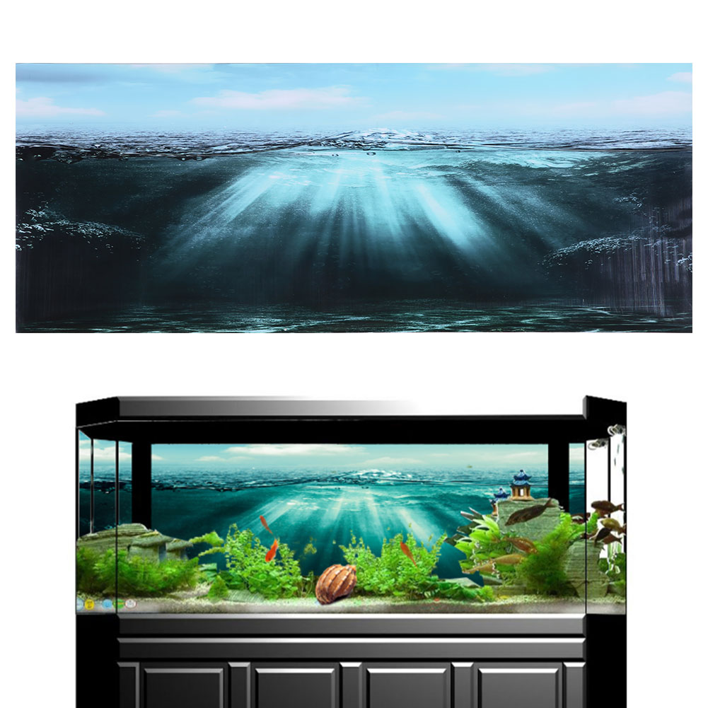 Fish Tank Background Painting 3d Effect Pvc World Poster Aquarium Background Map Fish Tank Decoration 122 X 46cm Decorations Aliexpress