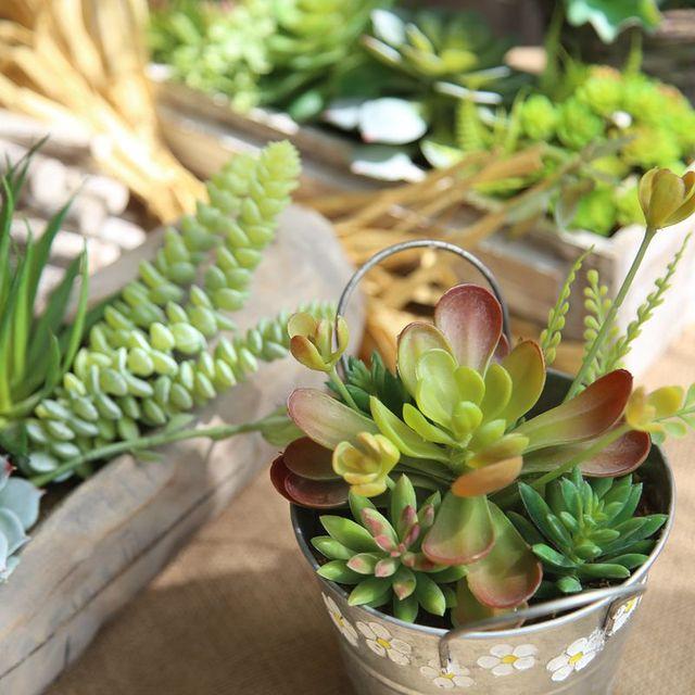 Artificial Dried Flowers Blue Lotus Succulent Plant Wedding Meat