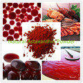 Hot Sell Natural Astaxanthin Powder with best price 100g