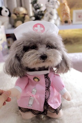 Funny-Pet-Costume-Suit-Dog-Clothes-Puppy-Uniform-Outfit-Cat-Clothing-Nurse-Doctor-Policeman-Pirate-Cowboy (2)