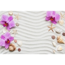 Laeacco Clear Sand Waves Stripe Beach Shell Flower Seaside Commodity Show Scene Photography Background Backdrop For Photo Studio