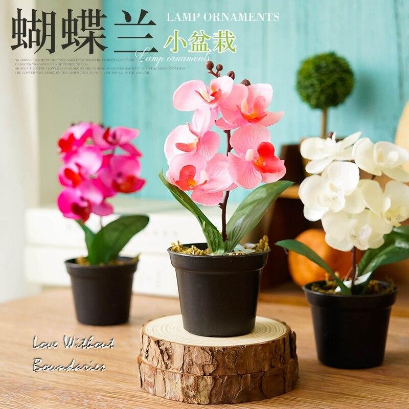 Moh orhideja, orhideja metulja, Simulacija umetnega cvetja, Okrasitev - Prazniki in zabave - Fotografija 3
