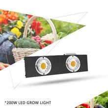 CREE CXB3590 CXB3070 CXA3070 200W 36000LM 3500K COB LED Grow Light Full Spectrum Growing Lamp Indoor Plant Growth Panel Lighting