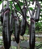 1 Original Packs, 10g Seeds/Pack, Black Long Eggplant Vegetable Seeds Free Shipping