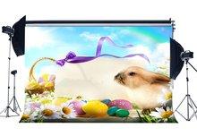 행복 한 부활절 토끼 배경 그린 된 계란 배경 신선한 꽃 리본 푸른 하늘 흰 구름 햇빛 frohe 배경