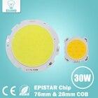 10pcs 3W 5W 7W 10W 12W 15W 20W 25W 30W COB Led Chip Diodes Surface Light for Led Bulb Spotlight Street Led Lamp